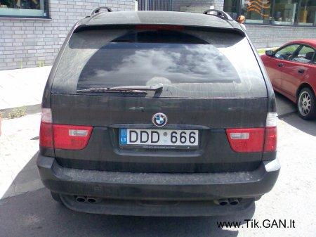 DDD666